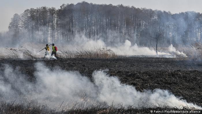 Выжженная территория в Нойцелле