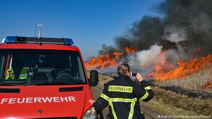 Пожарные наблюдают за горящими зарослями тростника
