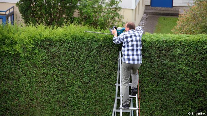 Мужчина подрезает живую изгородь