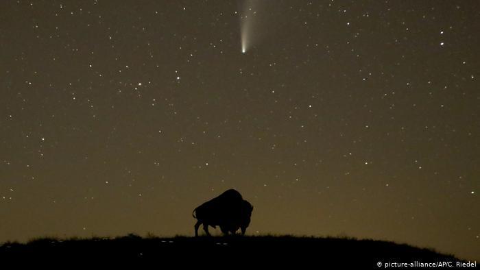 Комета NeoWise в небе над Онтарио